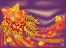 L'autunno condice la scheda Immagine Stock Libera da Diritti