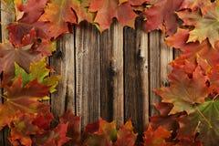 L'autunno copre di foglie struttura su fondo di legno marrone Immagine Stock