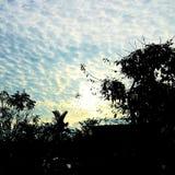 L'autunno della prateria di Bashang Fotografie Stock