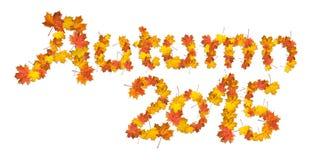 L'autunno 2015 di parole ha fatto delle foglie di acero luminose Immagini Stock Libere da Diritti