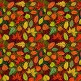 L'autunno frondeggia reticolo senza giunte Immagini Stock Libere da Diritti