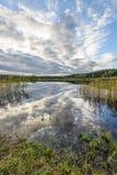 l'autunno ha colorato gli alberi sulla riva del lago con le riflessioni in wa Immagini Stock