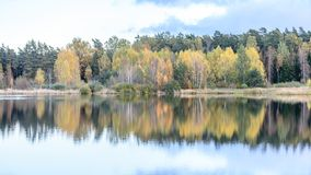l'autunno ha colorato gli alberi sulla riva del lago con le riflessioni in wa Immagine Stock Libera da Diritti