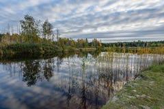 l'autunno ha colorato gli alberi sulla riva del lago con le riflessioni in wa Fotografie Stock Libere da Diritti