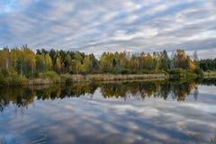 l'autunno ha colorato gli alberi sulla riva del lago con le riflessioni in wa Fotografie Stock