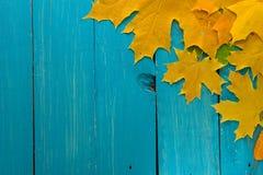 L'autunno rimane a turchese il fondo di legno con spazio vuoto fotografie stock