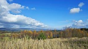 L'autunno tardo Fotografia Stock