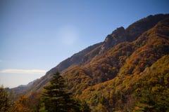 L'autunno tardo in montagna Fotografie Stock