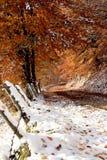 L'autunno tardo nel lato contry Immagini Stock