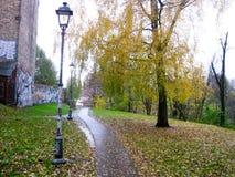 L'autunno tardo nel parco Immagine Stock