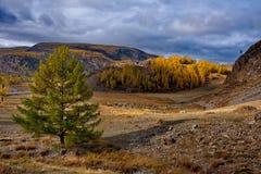L'autunno tardo nelle valli intorno alla cresta del nord di Chui Immagine Stock