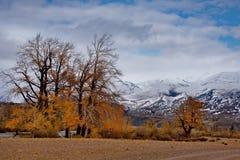 L'autunno tardo nelle valli intorno alla cresta del nord di Chui Fotografie Stock Libere da Diritti