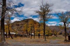 L'autunno tardo nelle valli intorno alla cresta del nord di Chui Immagine Stock Libera da Diritti