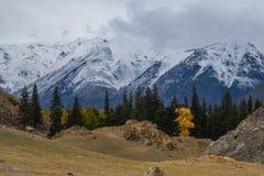 L'autunno tardo nelle valli intorno alla cresta del nord di Chui Fotografie Stock