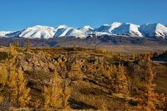 L'autunno tardo nelle valli intorno alla cresta del nord di Chui Immagini Stock