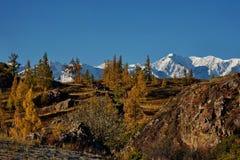 L'autunno tardo nelle valli intorno alla cresta del nord di Chui Immagini Stock Libere da Diritti