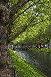 L'avenue Königsallee à Dusseldorf en Allemagne Photos stock