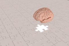L'avion absent de cerveau de morceau de puzzle Photographie stock libre de droits