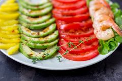 L'avocado, il pomodoro, il pepe ed i gamberetti su un piatto hanno allineato con le file Fotografia Stock Libera da Diritti