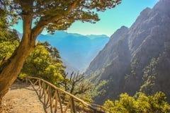 L'avventura comincia Discenda nel canyon Fotografia Stock Libera da Diritti