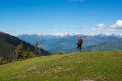 L'avventuriere passa attraverso il prato alpino Fotografia Stock Libera da Diritti