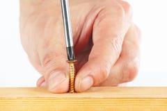 L'avvitamento avvita in un blocco di legno con un cacciavite Fotografia Stock