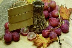 L'azienda agricola beve la bottiglia e l'uva di vimini Immagini Stock