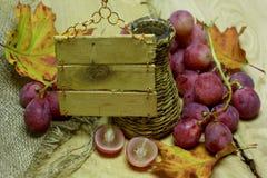 L'azienda agricola beve la bottiglia e l'uva di vimini con l'etichetta Fotografia Stock Libera da Diritti
