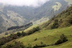 L'azienda agricola in Colombia Fotografia Stock Libera da Diritti