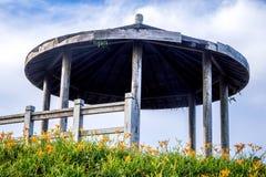 L'azienda agricola daylilyTawny arancio del fiore dell'emerocallide a Taimali Immagini Stock
