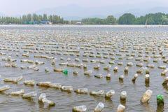 L'azienda agricola dei crostacei da vecchia plastica imbottiglia il mare a Chanthaburi, T Immagini Stock Libere da Diritti
