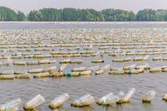 L'azienda agricola dei crostacei da vecchia plastica imbottiglia il mare a Chanthaburi, T Fotografia Stock Libera da Diritti
