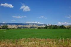 L'azienda agricola e le montagne si avvicinano al Consiglio, Idaho Immagini Stock Libere da Diritti