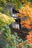 L'azienda agricola invasa ma ancora stante ha sparso la parete con la finestra rotta circondata dagli alberi immagini stock libere da diritti