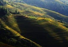 L'azienda agricola nella zona di mountainius, Cina di Terrence Fotografia Stock