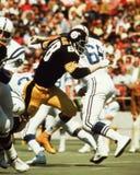 L C Bosque verde, Pittsburgh Steelers Imagen de archivo libre de regalías