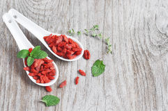 Lýcium bárbarum, goji berry, Himalayan goji Stock Photos