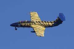 L-29 Delphin met strepen Royalty-vrije Stock Afbeelding