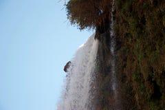 L'eau écumante plongeant au-dessus d'un bord de falaise images libres de droits