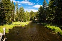 L'eau, arbres et ciel Photographie stock libre de droits