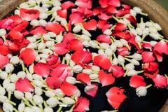 L'eau avec des fleurs pour le festival thaïlandais Songkran Photo libre de droits