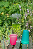L'eau avec le baume de menthe et de citron Image stock