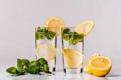 L'eau avec le citron et la menthe Images libres de droits
