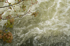 L'eau blanche Photographie stock