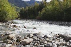 L'eau blanche bouillonne au-dessus de la roche dans une crique de montagne Images libres de droits