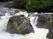 L'eau blanche rapide, roches noires brillantes Photographie stock