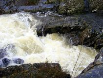 L'eau blanche rapide, roches noires brillantes Photo stock