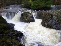 L'eau blanche rapide, roches noires brillantes Images libres de droits