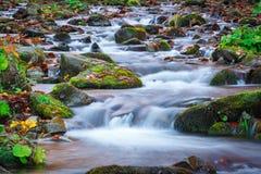 L'eau bleue du courant de montagne dans le temps d'automne Photographie stock