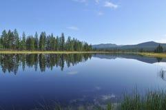 L'eau bleue du lac sous le ciel bleu a encadré des carex de tiges. Photographie stock